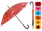 Paraguas amarillo con rojo girasol